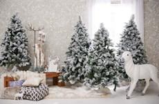 Tám xu hướng trang trí nhà cửa cho mùa Giáng sinh năm 2015