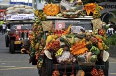 [Photo] Cuộc diễu hành của những chiếc xe jeep phong cách