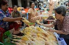 Trung Quốc ghi nhận 6 trường hợp nhiễm virus cúm H5N6