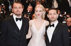 [Photo] Những dấu ấn khó quên trên thảm đỏ điện ảnh của Leonardo