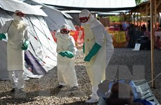 Một người tử vong do Ebola sau vài giờ tuyên bố hết dịch của WHO