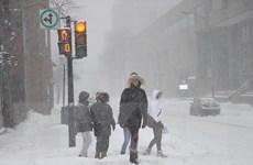 Bão tuyết ảnh hưởng tới cuộc sống người dân ở nhiều nơi