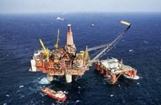 Giá dầu Brent rơi xuống mức kỷ lục mới trong nhiều năm nay