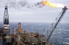 Thị trường năng lượng tụt dốc tác động tiêu cực tới kinh tế toàn cầu