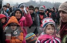 """Đức nói đề nghị nổ súng vào người tị nạn là """"vô nhân đạo và lố bịch"""""""