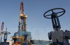 """Iran ca ngợi việc """"đóng băng"""" sản lượng, dầu lập tức tăng giá"""