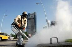 Nam Phi xác nhận trường hợp nhiễm virus Zika đầu tiên