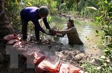 Phê duyệt dự án cấp nước an toàn vùng đồng bằng sông Cửu Long