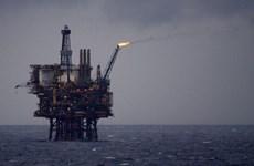 BP và Statoil tạm thời rút nhân viên khỏi hai mỏ khí đốt tại Algeria