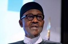 Nigeria đánh giá cao tiềm năng hợp tác kinh tế với Trung Quốc