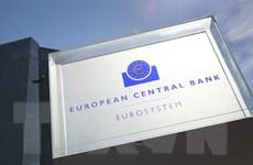 Chính sách tiền tệ của ECB cần thời gian để phát huy tác dụng