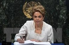 Chiến lược gia của tổng thống Brazil bị cáo buộc tham nhũng
