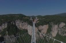 [Photo] Thót tim đi trên cây cầu kính dài và cao nhất thế giới