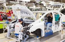 Toyota phát triển hệ thống trợ lái dựa vào AI trong 5 năm tới