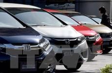 Honda Ấn Độ báo lỗi hơn 190.000 xe có vấn đề về túi khí