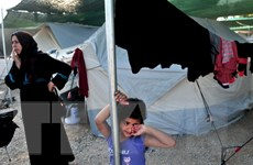 Số trẻ tị nạn mất tích ở Đức ngày càng tăng, lên tới gần 9.000 em