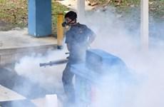 Singapore bắt đầu chiến dịch diệt muỗi mang virus Zika