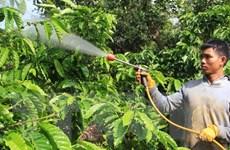 [Video] Lâm Đồng giới thiệu càphê Arabica tại thị trường Nhật Bản
