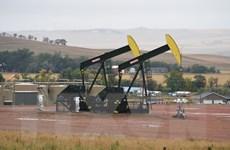 Nga sẽ lập kỷ lục khai thác 548 triệu tấn dầu vào năm 2017