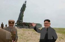 Lãnh đạo Triều Tiên chỉ đạo quân đội tập trận pháo binh