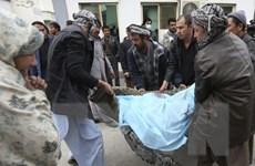 Hàng chục người thương vong trong vụ đánh bom liều chết ở Baghdad