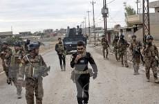 Iraq thông qua dự luật hợp pháp hóa lực lượng bán quân sự Hashd Shaabi