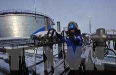 Bất chấp lệnh trừng phạt, Nga vẫn cung cấp lượng khí đốt kỷ lục cho EU