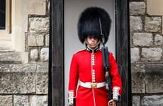 Đi dạo lúc 3 giờ sáng, Nữ hoàng Anh suýt bị lính gác bắn chết