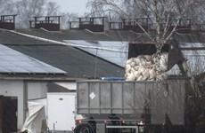 Dịch cúm gia cầm tác động tiêu cực đến châu Âu trong tương lai