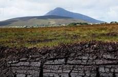 Nguy cơ phát thải khí CO2 từ các đầm lầy than bùn Trung Phi