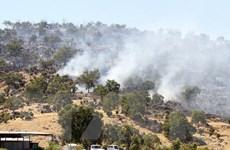 Australia cảnh báo cháy rừng ở mức cao do nắng nóng bất thường