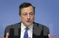 Người dân cần kiên nhẫn chờ đợi đà phục hồi của kinh tế Eurozone