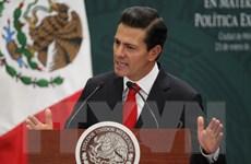 Tổng thống Mexico có thể sẽ hủy chuyến thăm Mỹ vào cuối tháng 1