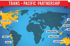TPP-1 và nỗ lực đầu tiên để thúc đẩy thương mại tự do