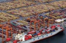 Khai thông tuyến tàu biển chở hoa quả từ Việt Nam sang Trung Quốc