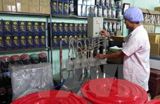 [Video] Nhiều cơ sở sản xuất rượu thủ công không đảm bảo vệ sinh