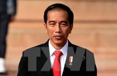 Tổng thống Indonesia ra lệnh giải tán nhóm Hồi giáo HTI