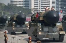 Tổng thống Nga sẵn sàng giúp giải quyết vấn đề hạt nhân Triều Tiên