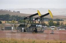 Giá dầu đi xuống do quyết định rút khỏi Hiệp định Paris của Mỹ