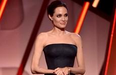 """Đầm Versace - """"Vũ khí"""" tôn dáng ngọc của các mỹ nhân nổi tiếng"""
