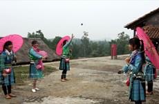 Sắc Xuân nở rộ trên khắp mọi miền Tổ quốc Việt Nam
