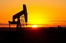 Giá dầu giảm trên thị trường châu Á trong phiên giao dịch 19/2