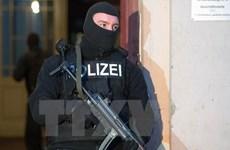 Bosnia-Herzegovina truy quét các phần tử Hồi giáo cực đoan