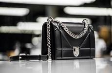 Diorama - mẫu túi xách đáng khao khát nhất trong năm 2015