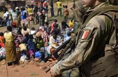 Điều tra các vụ lạm dụng tình dục trẻ em tại Cộng hòa Trung Phi