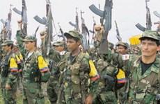 Chính phủ Colombia và FARC đạt được thỏa thuận giảm xung đột
