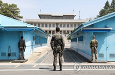 Hàn Quốc mở lại tour du lịch đến làng đình chiến Panmunjom
