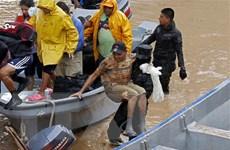 Trung Mỹ chạy đua với thời gian tìm kiếm người mất tích sau bão Iota