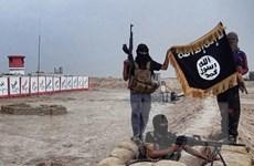 Iraq bắt giữ 'thủ lĩnh hành chính' của IS tại sân bay Baghdad