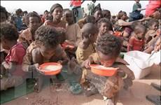 Tây Phi đối mặt nạn đói gia tăng do thánh chiến và bạo lực
